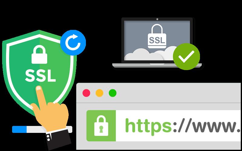 تاثیر SSL در سئو سایت